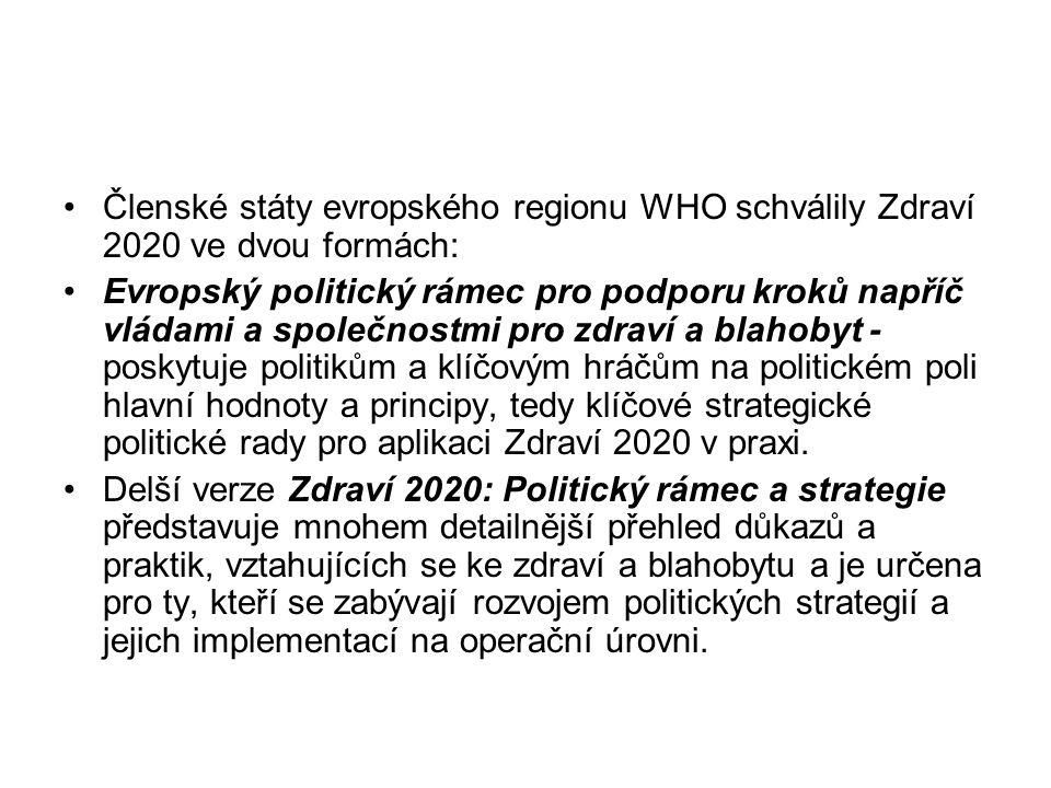 Členské státy evropského regionu WHO schválily Zdraví 2020 ve dvou formách: Evropský politický rámec pro podporu kroků napříč vládami a společnostmi pro zdraví a blahobyt - poskytuje politikům a klíčovým hráčům na politickém poli hlavní hodnoty a principy, tedy klíčové strategické politické rady pro aplikaci Zdraví 2020 v praxi.
