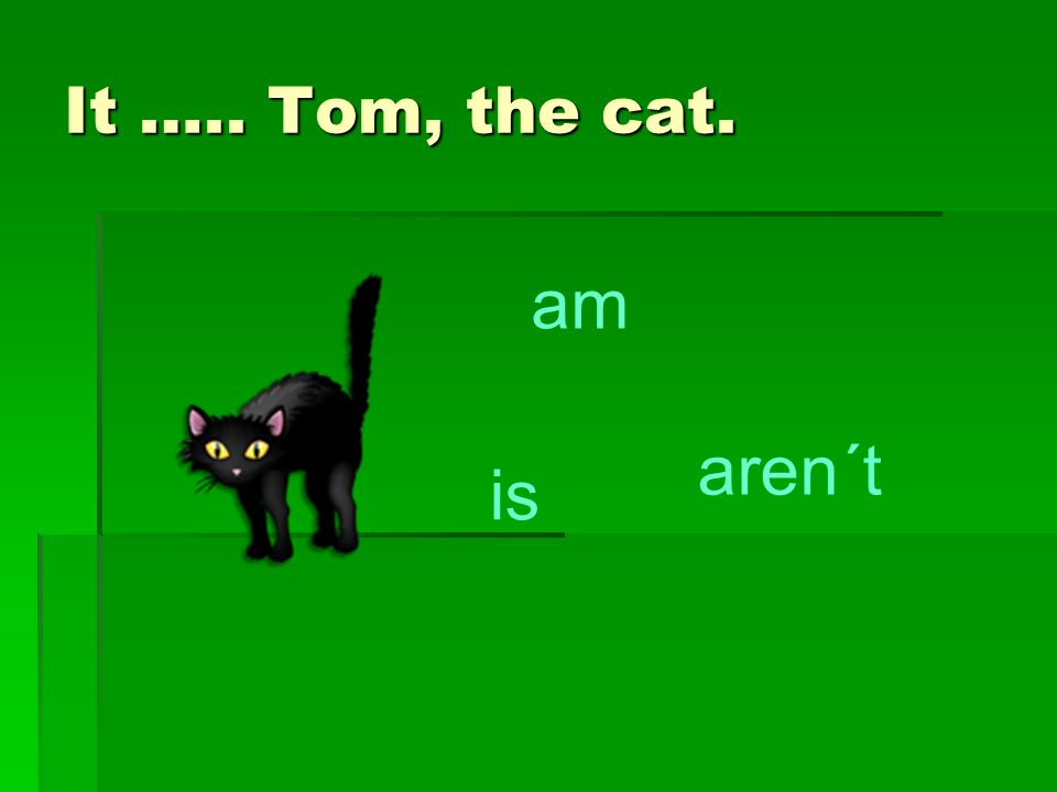 It ….. Tom, the cat. am is aren´t