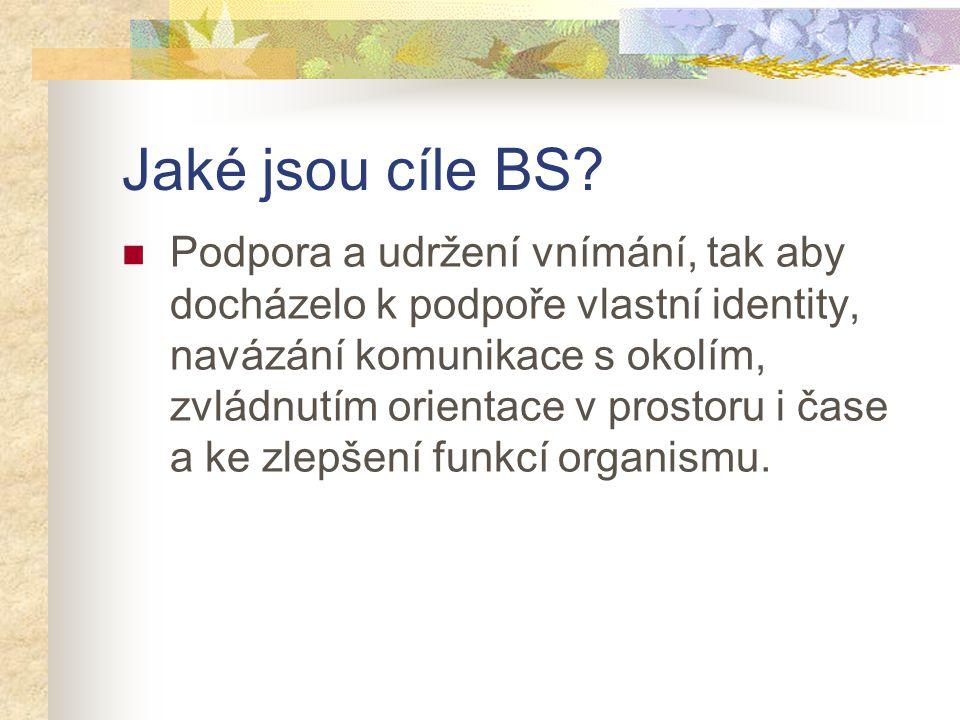 Jaké jsou cíle BS? Podpora a udržení vnímání, tak aby docházelo k podpoře vlastní identity, navázání komunikace s okolím, zvládnutím orientace v prost