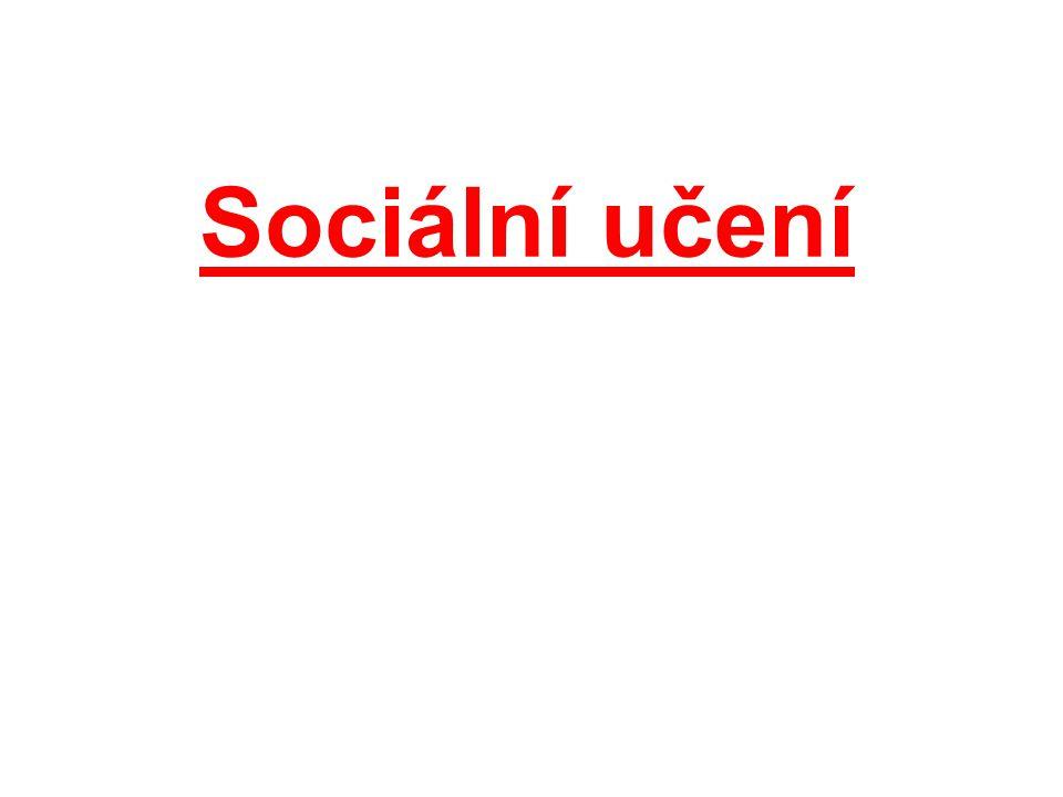 Literatura: Řezáč, Jaroslav.Sociální psychologie.