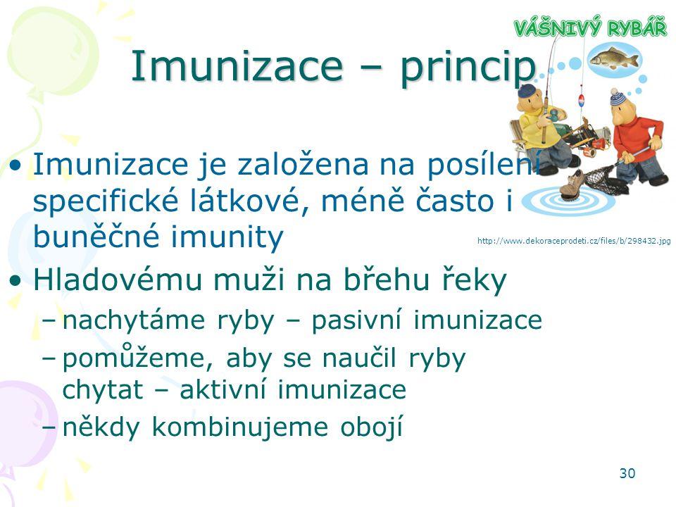 30 Imunizace – princip Imunizace je založena na posílení specifické látkové, méně často i buněčné imunity Hladovému muži na břehu řeky –nachytáme ryby