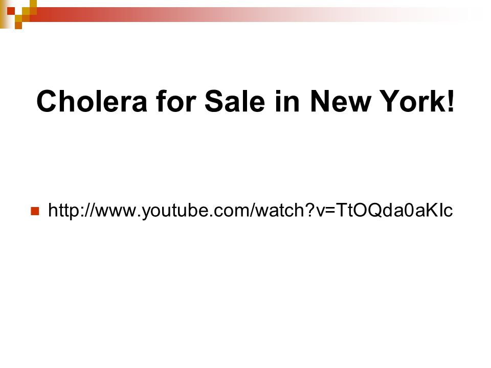 Cholera for Sale in New York! http://www.youtube.com/watch v=TtOQda0aKIc