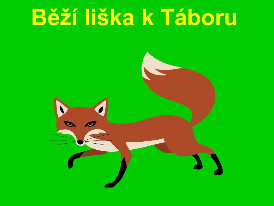 Běží liška k Táboru