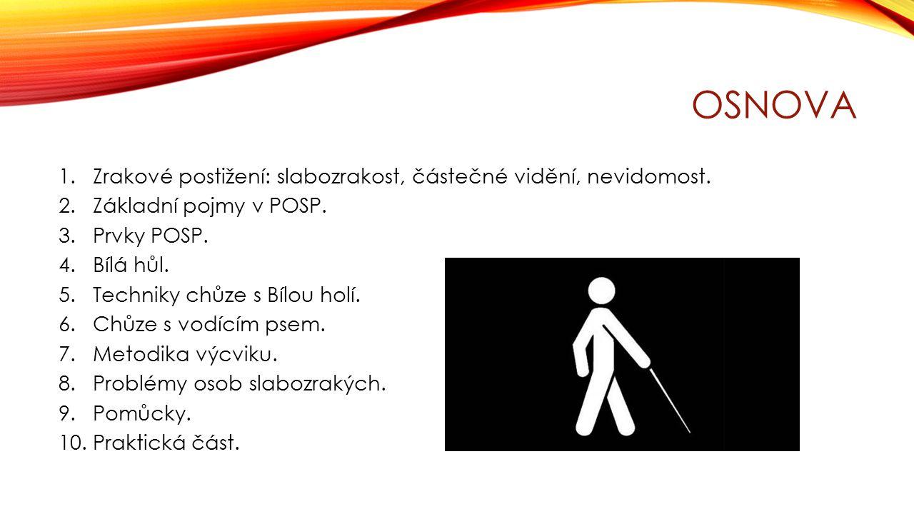 OSNOVA 1.Zrakové postižení: slabozrakost, částečné vidění, nevidomost. 2.Základní pojmy v POSP. 3.Prvky POSP. 4.Bílá hůl. 5.Techniky chůze s Bílou hol