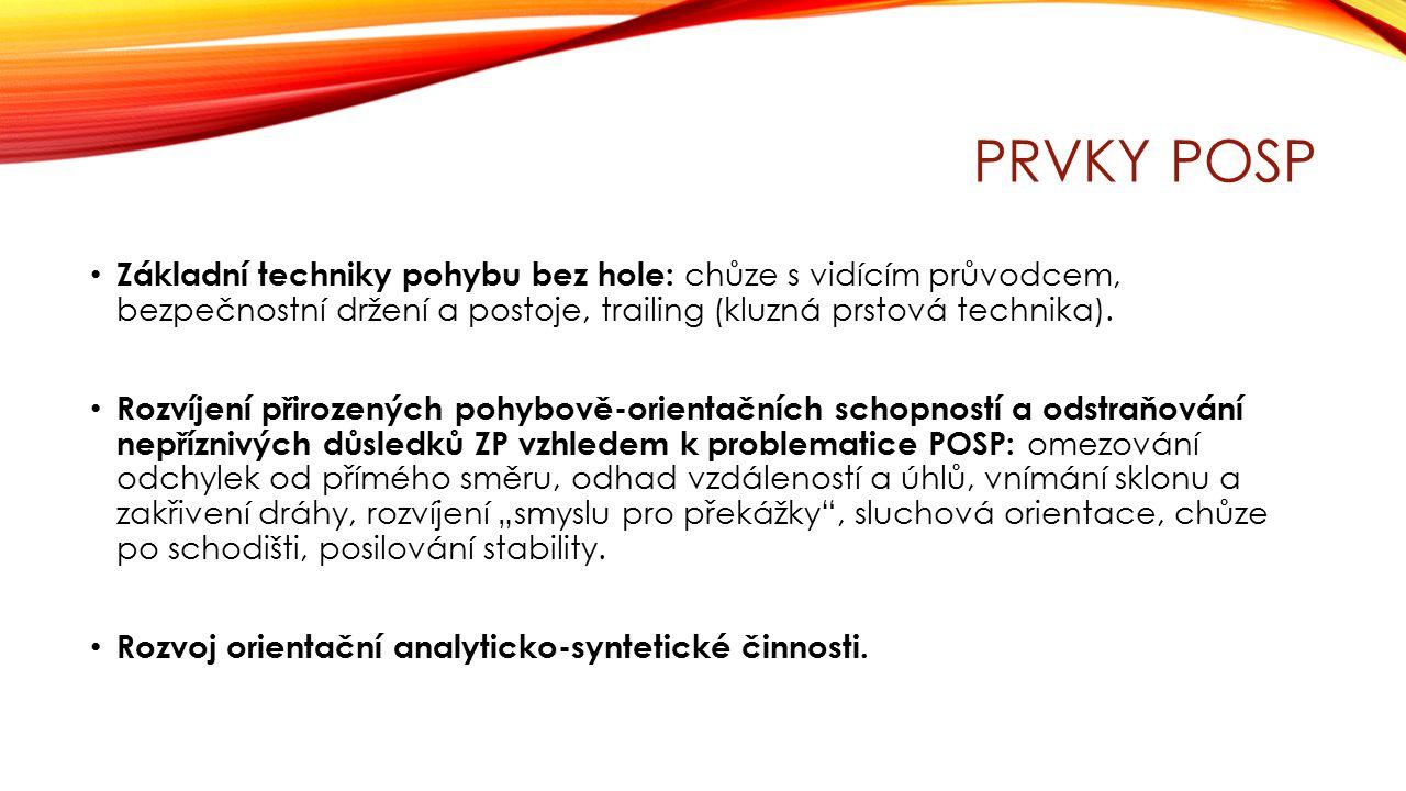 ZÁKLADNÍ TECHNIKY POHYBU BEZ HOLE Chůze s vidícím průvodcem: průvodci i osoby se zrakovým postižením musí být proškoleni v tom, jak má průvodcovství probíhat.