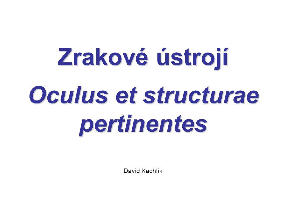 Zrakové ústrojí Oculus et structurae pertinentes David Kachlík