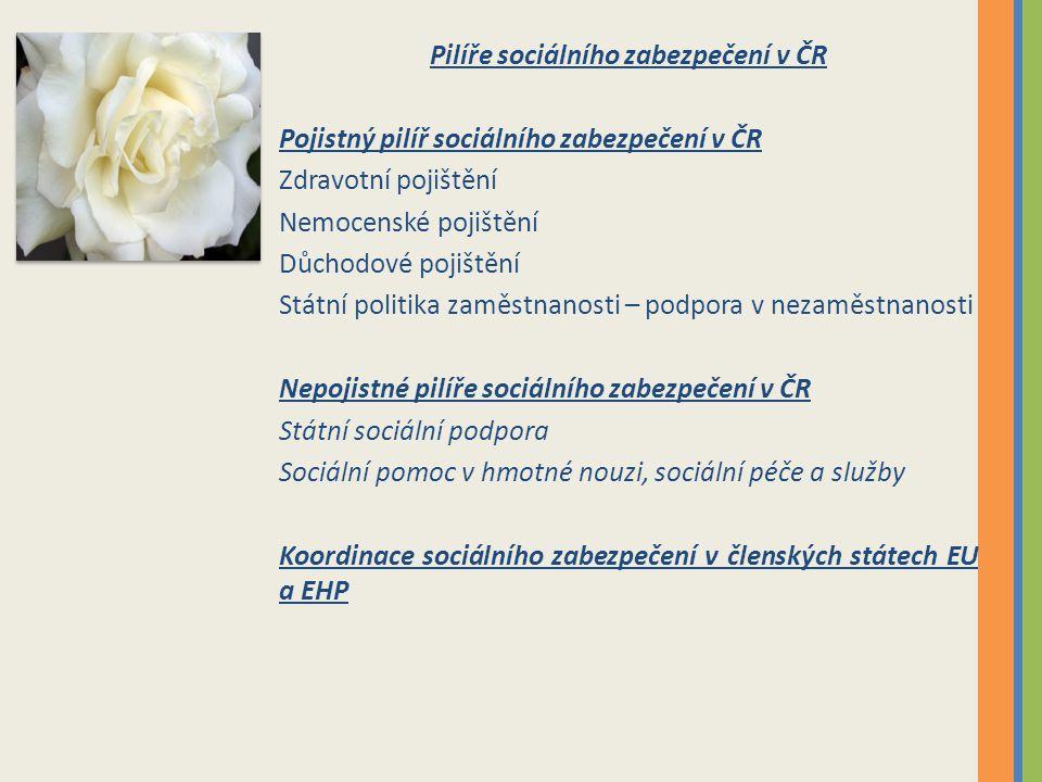 Pilíře sociálního zabezpečení v ČR Pojistný pilíř sociálního zabezpečení v ČR Zdravotní pojištění Nemocenské pojištění Důchodové pojištění Státní poli