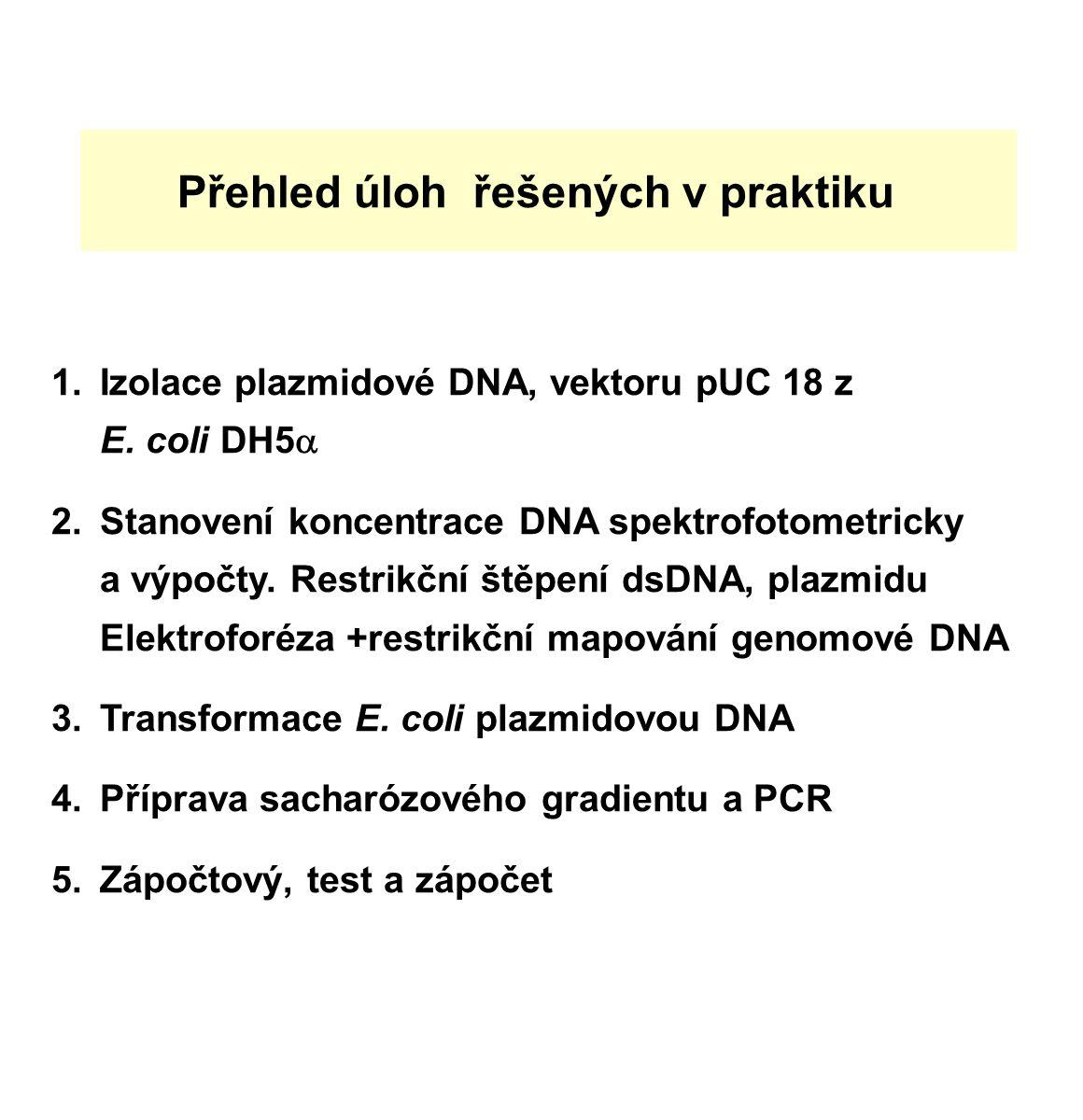 Přehled úloh řešených v praktiku 1.Izolace plazmidové DNA, vektoru pUC 18 z E.