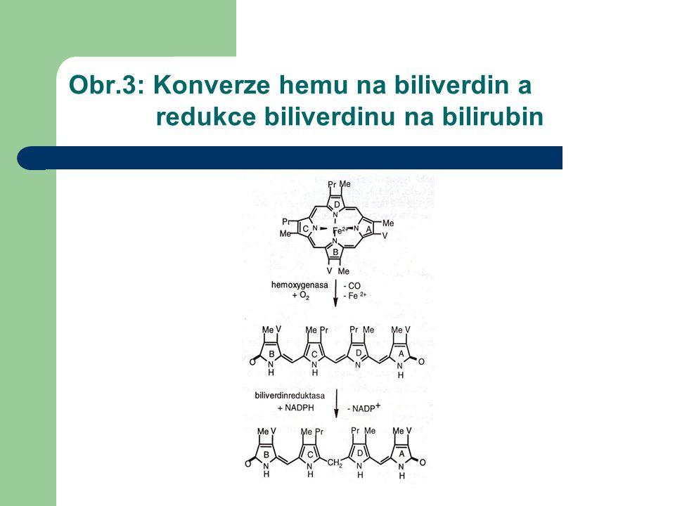 Obr.3: Konverze hemu na biliverdin a redukce biliverdinu na bilirubin
