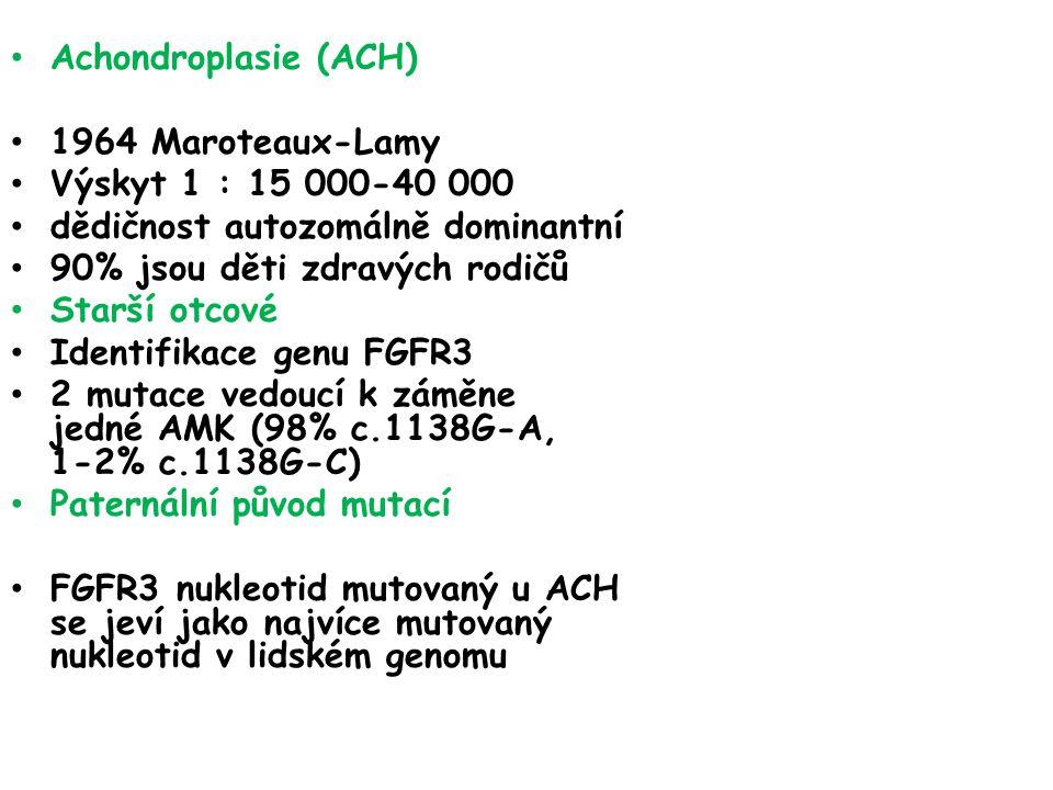 Achondroplasie (ACH) 1964 Maroteaux-Lamy Výskyt 1 : 15 000-40 000 dědičnost autozomálně dominantní 90% jsou děti zdravých rodičů Starší otcové Identifikace genu FGFR3 2 mutace vedoucí k záměne jedné AMK (98% c.1138G-A, 1-2% c.1138G-C) Paternální původ mutací FGFR3 nukleotid mutovaný u ACH se jeví jako najvíce mutovaný nukleotid v lidském genomu