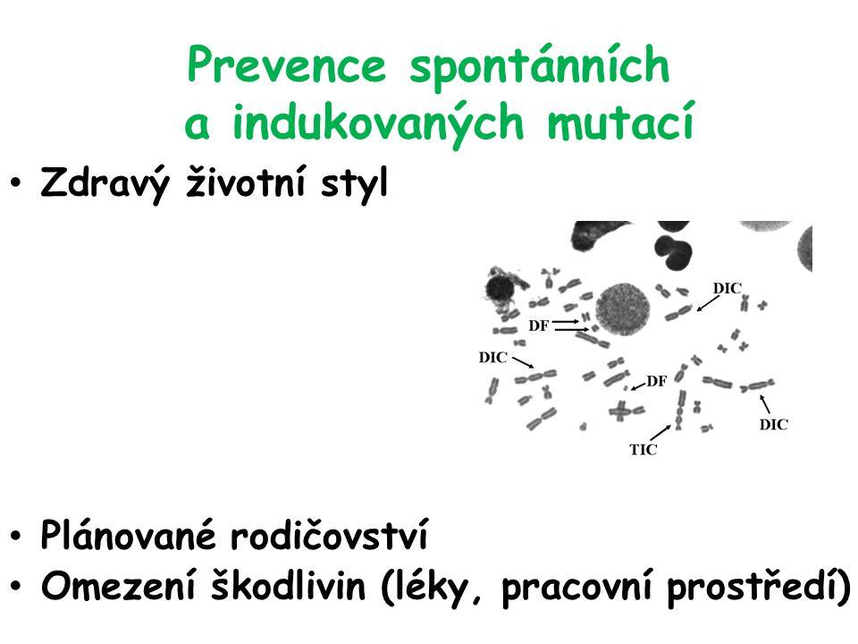 Prevence spontánních a indukovaných mutací Zdravý životní styl Plánované rodičovství Omezení škodlivin (léky, pracovní prostředí)