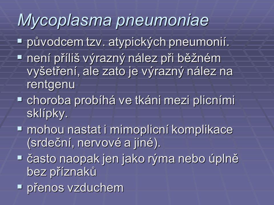 Mycoplasma pneumoniae  původcem tzv. atypických pneumonií.  není příliš výrazný nález při běžném vyšetření, ale zato je výrazný nález na rentgenu 