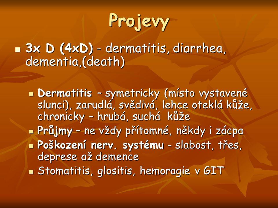 Projevy 3x D (4xD) - dermatitis, diarrhea, dementia,(death) 3x D (4xD) - dermatitis, diarrhea, dementia,(death) Dermatitis – symetricky (místo vystave