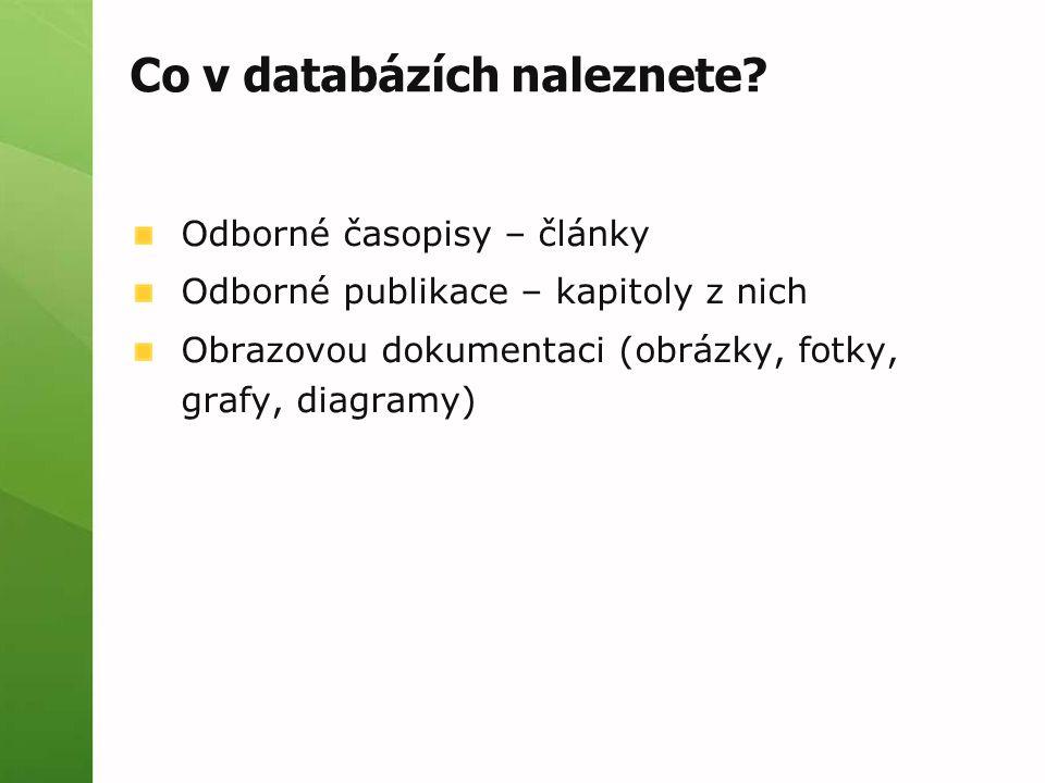 Co v databázích naleznete.