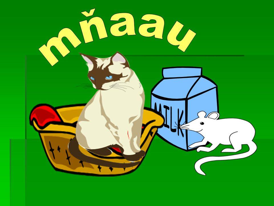 A co písnička o kočce. Kočka leze dírou, pes oknem...