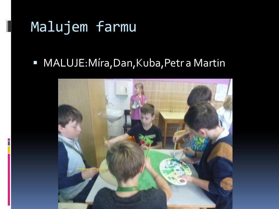Malujem farmu  MALUJE:Míra,Dan,Kuba,Petr a Martin