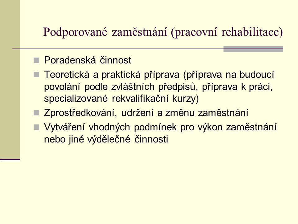 Podporované zaměstnání (pracovní rehabilitace) Poradenská činnost Teoretická a praktická příprava (příprava na budoucí povolání podle zvláštních předp