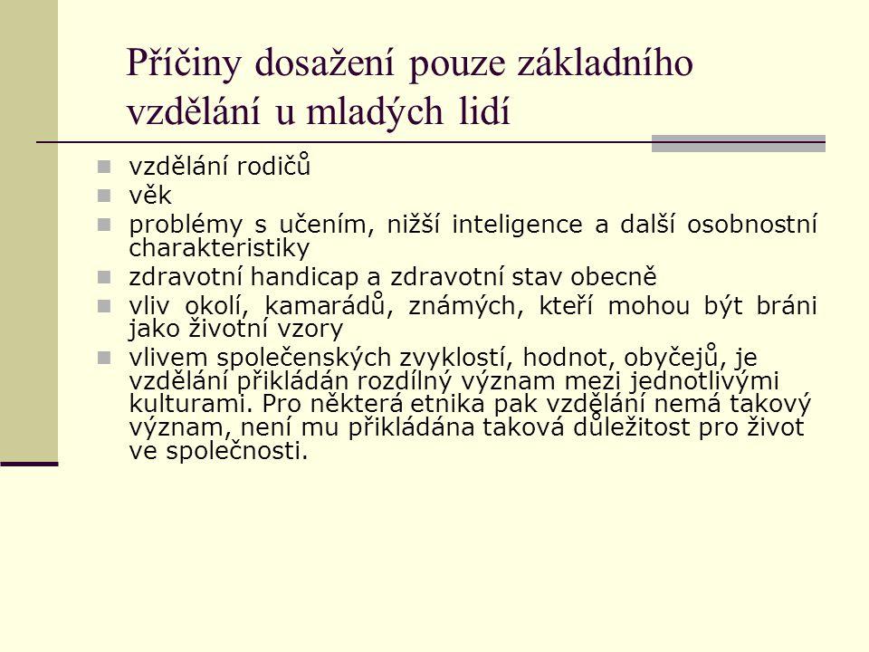 Příčiny dosažení pouze základního vzdělání u mladých lidí vzdělání rodičů věk problémy s učením, nižší inteligence a další osobnostní charakteristiky