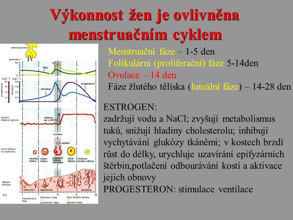 Výkonnost žen je ovlivněna menstruačním cyklem Menstruační fáze – 1-5 den Folikulární (proliferační) fáze 5-14den Ovulace – 14 den Fáze žlutého tělísk