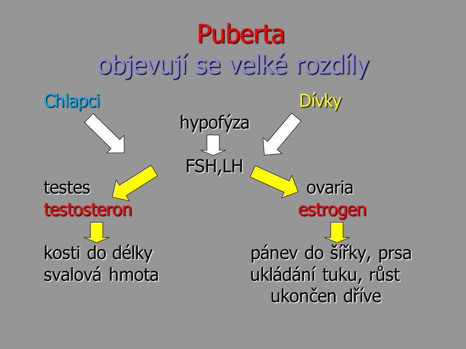 Puberta objevují se velké rozdíly Puberta objevují se velké rozdíly Chlapci Dívky Chlapci Dívky hypofýza hypofýza FSH,LH FSH,LH testes ovaria testes o