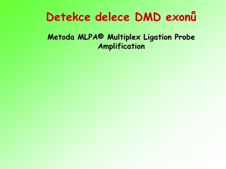 Metoda MLPA® Multiplex Ligation Probe Amplification Detekce delece DMD exonů Metoda MLPA® Multiplex Ligation Probe Amplification