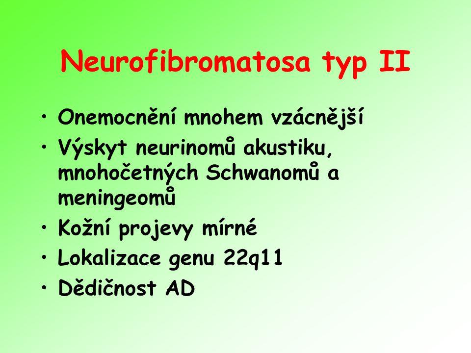 Neurofibromatosa typ II Onemocnění mnohem vzácnější Výskyt neurinomů akustiku, mnohočetných Schwanomů a meningeomů Kožní projevy mírné Lokalizace genu