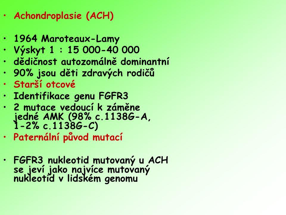 Achondroplasie (ACH) 1964 Maroteaux-Lamy Výskyt 1 : 15 000-40 000 dědičnost autozomálně dominantní 90% jsou děti zdravých rodičů Starší otcové Identif