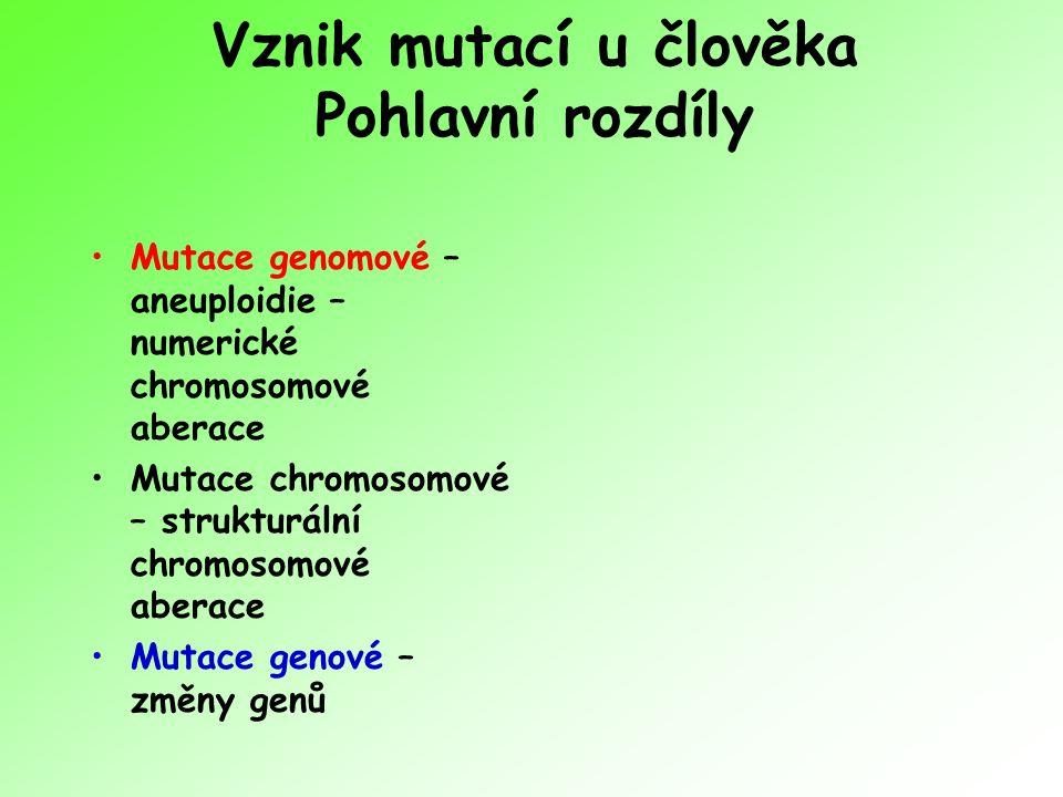 Vznik mutací u člověka Pohlavní rozdíly Mutace genomové – aneuploidie – numerické chromosomové aberace Mutace chromosomové – strukturální chromosomové