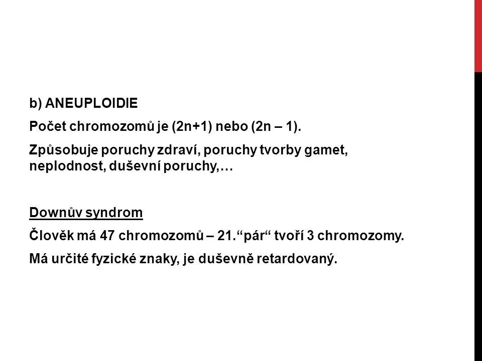 b) ANEUPLOIDIE Počet chromozomů je (2n+1) nebo (2n – 1).