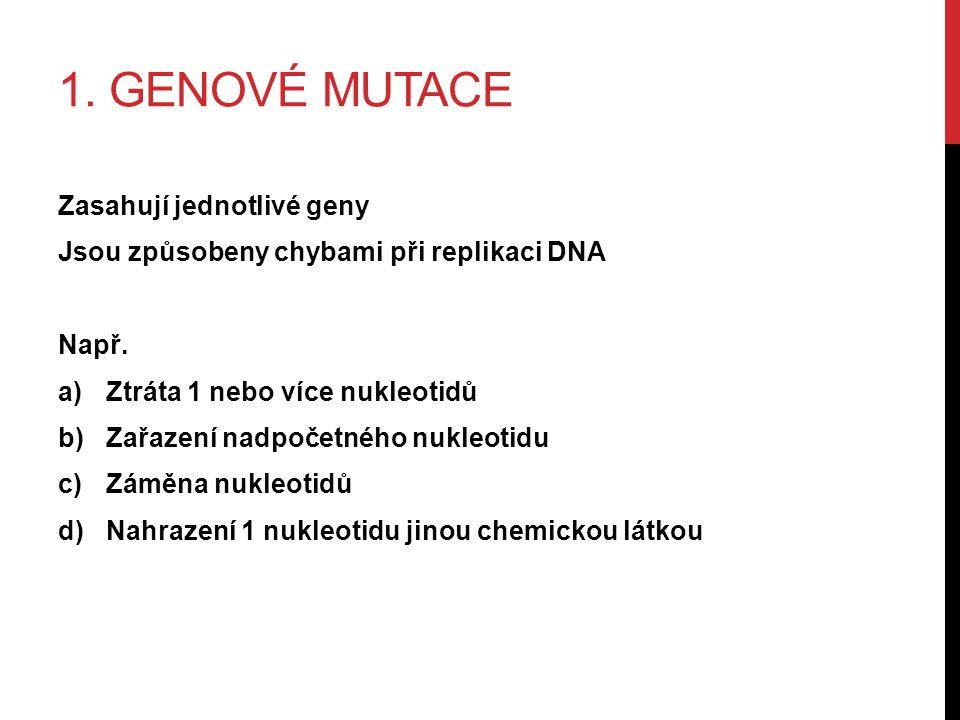 1. GENOVÉ MUTACE Zasahují jednotlivé geny Jsou způsobeny chybami při replikaci DNA Např.