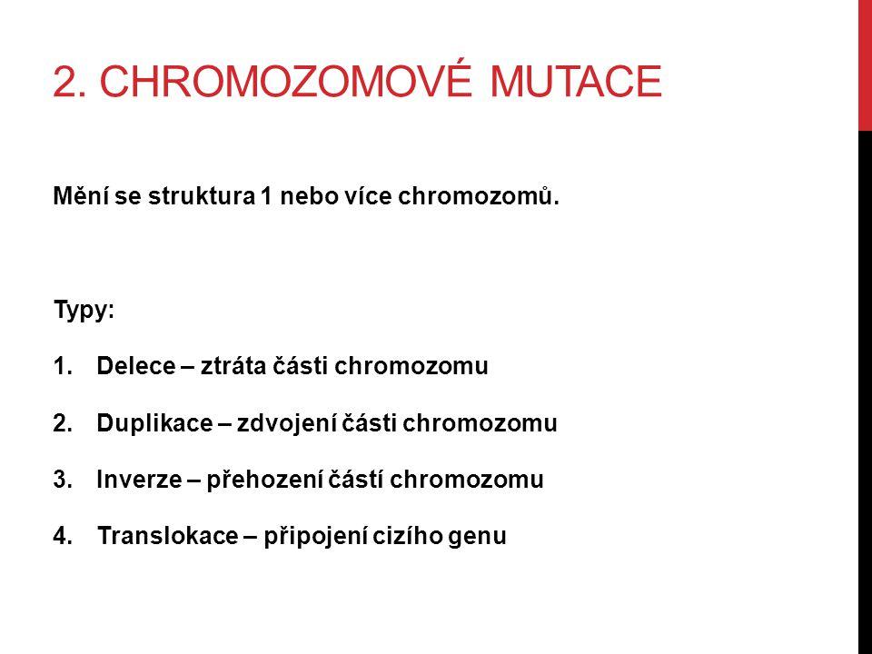 2. CHROMOZOMOVÉ MUTACE Mění se struktura 1 nebo více chromozomů.