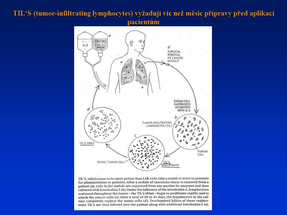 TIL'S (tumor-infiltrating lymphocytes) vyžadují víc než měsíc přípravy před aplikací pacientům