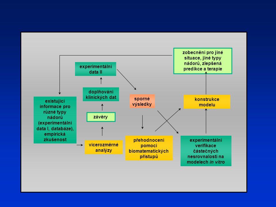 závěry experimentální data II sporné výsledky zobecnění pro jiné situace, jiné typy nádorů, zlepšená predikce a terapie existující informace pro různé