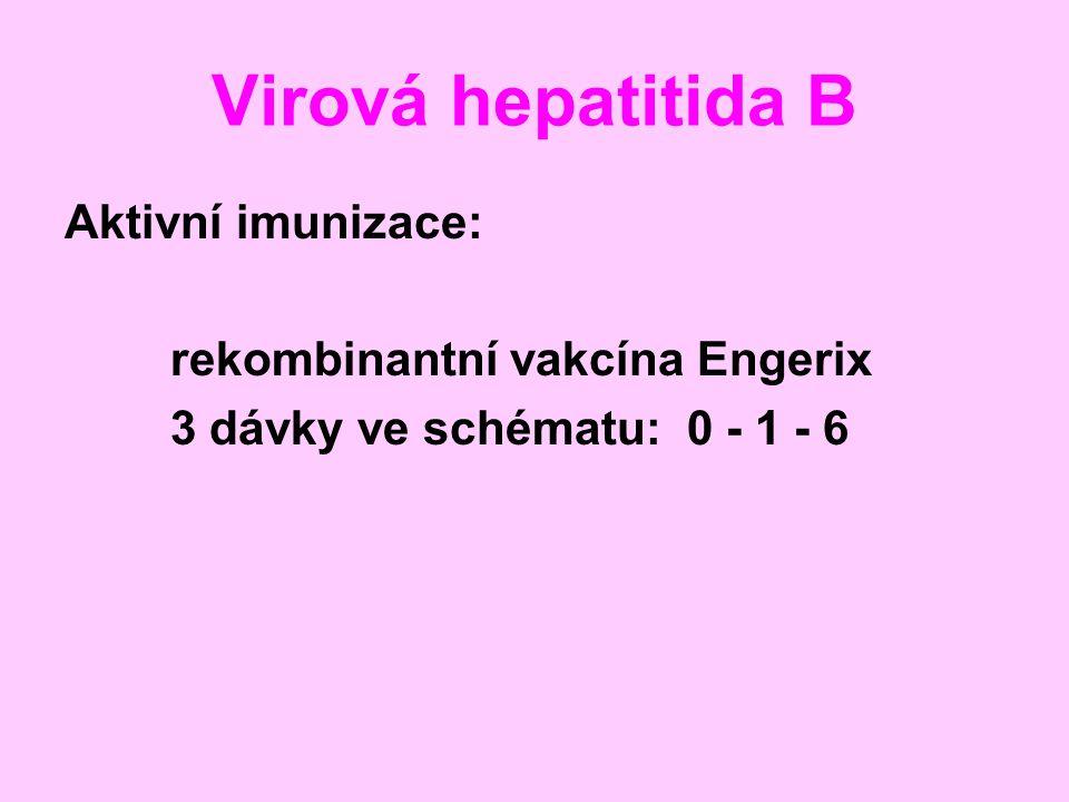 Virová hepatitida B Aktivní imunizace: rekombinantní vakcína Engerix 3 dávky ve schématu: 0 - 1 - 6
