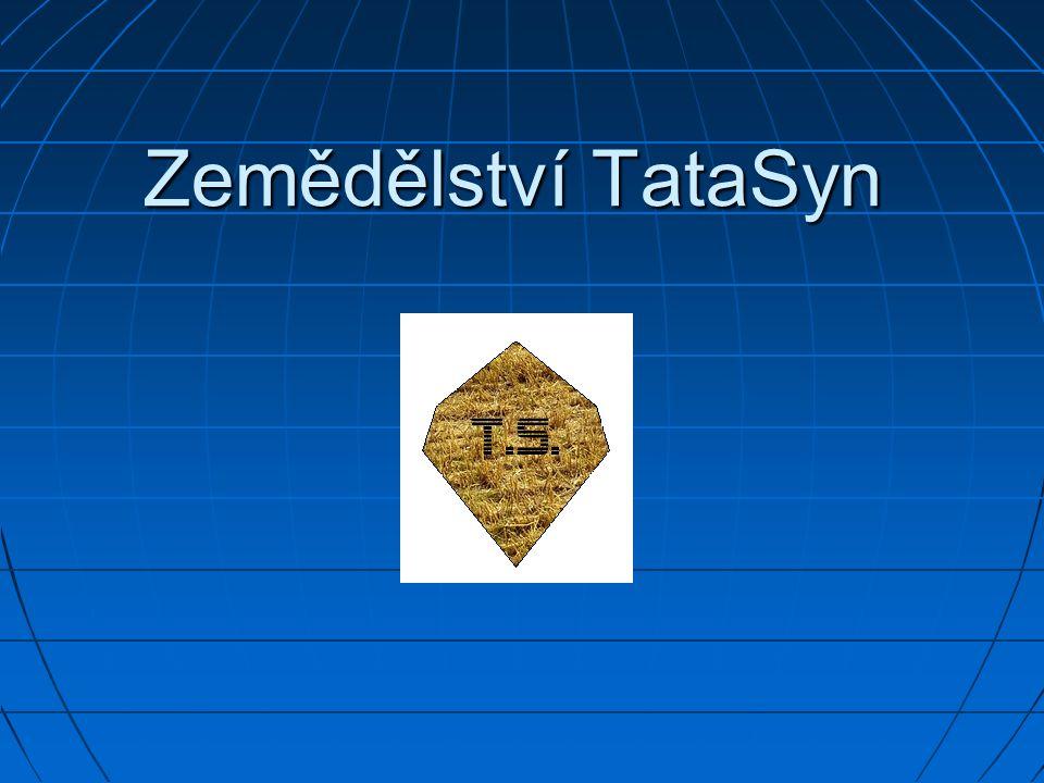 Vznik firmy Firma Zemědělství TataSyn vznikla roku 1989.