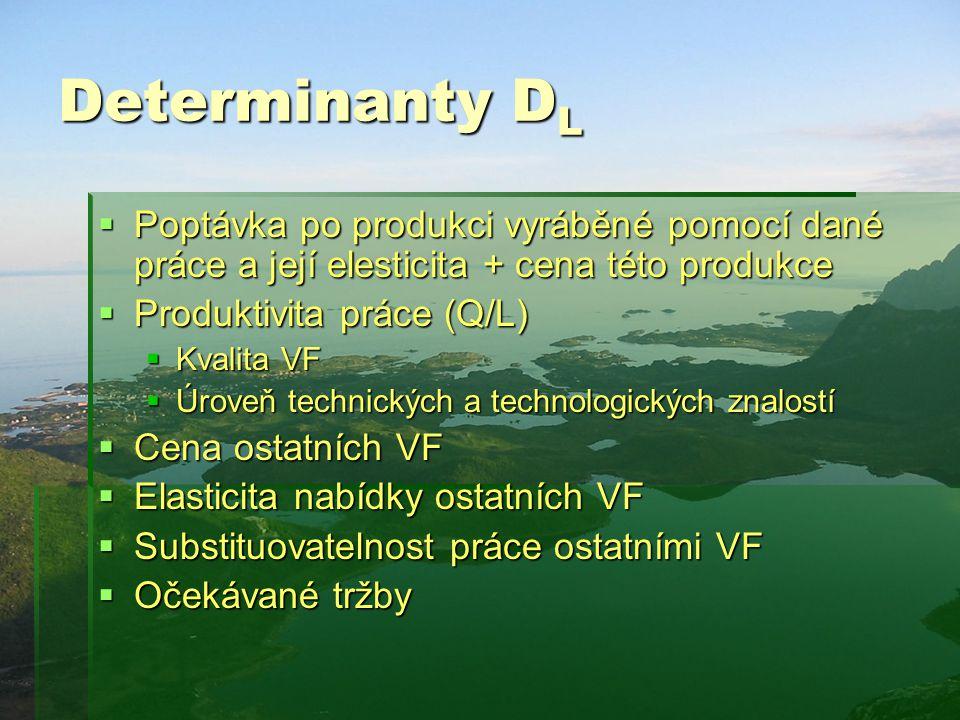 Determinanty D L  Poptávka po produkci vyráběné pomocí dané práce a její elesticita + cena této produkce  Produktivita práce (Q/L)  Kvalita VF  Úr