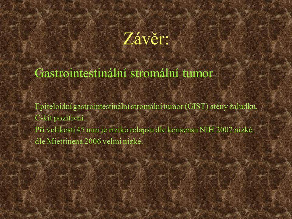 Gastrointestinální stromální tumor Epiteloidní gastrointestinální stromální tumor (GIST) stěny žaludku, C-kit pozitivní. Při velikosti 45 mm je riziko