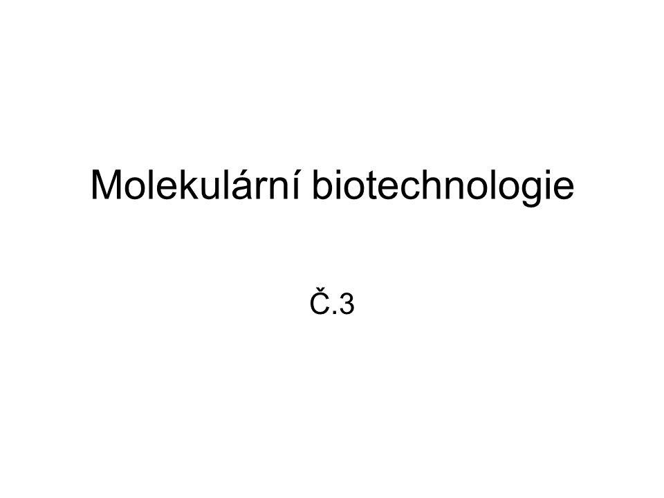 Molekulární biotechnologie Č.3