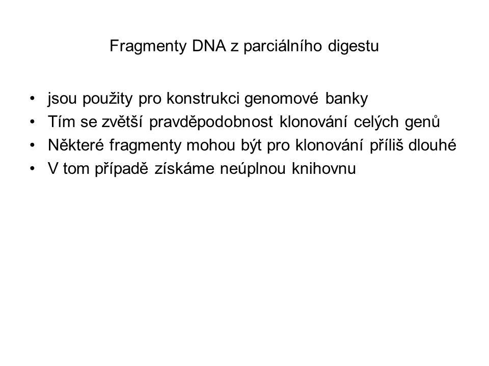 Fragmenty DNA z parciálního digestu jsou použity pro konstrukci genomové banky Tím se zvětší pravděpodobnost klonování celých genů Některé fragmenty mohou být pro klonování příliš dlouhé V tom případě získáme neúplnou knihovnu