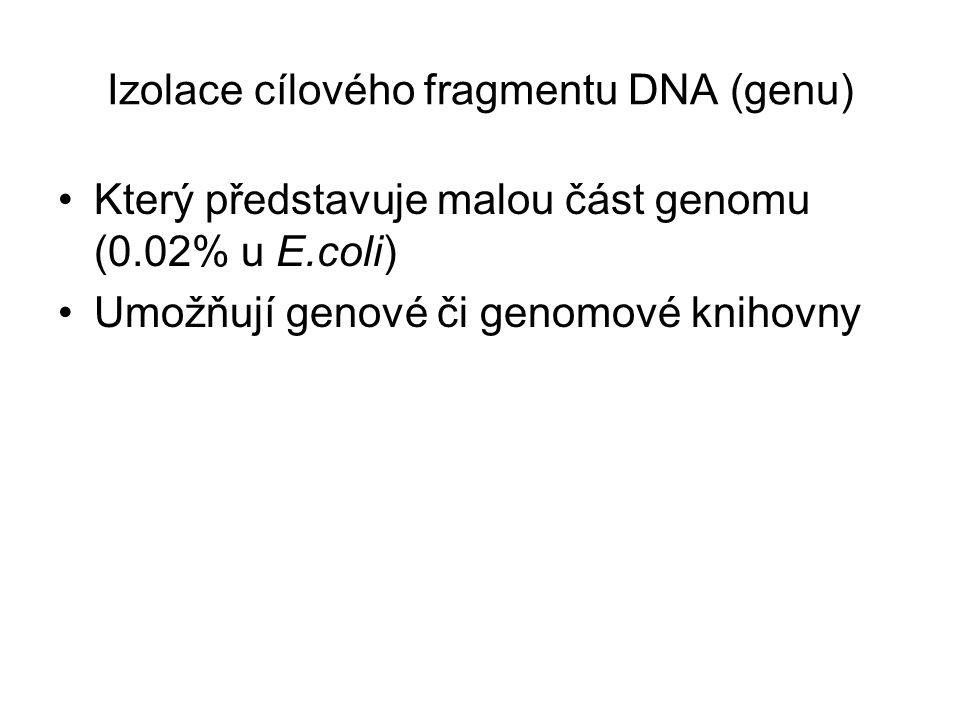 Izolace cílového fragmentu DNA (genu) Který představuje malou část genomu (0.02% u E.coli) Umožňují genové či genomové knihovny