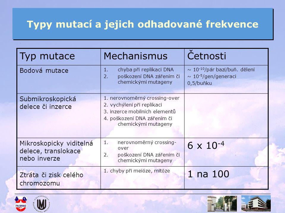 Typy mutací a jejich odhadované frekvence Typ mutaceMechanismusČetnosti Bodová mutace 1.chyba při replikaci DNA 2.poškození DNA zářením či chemickými