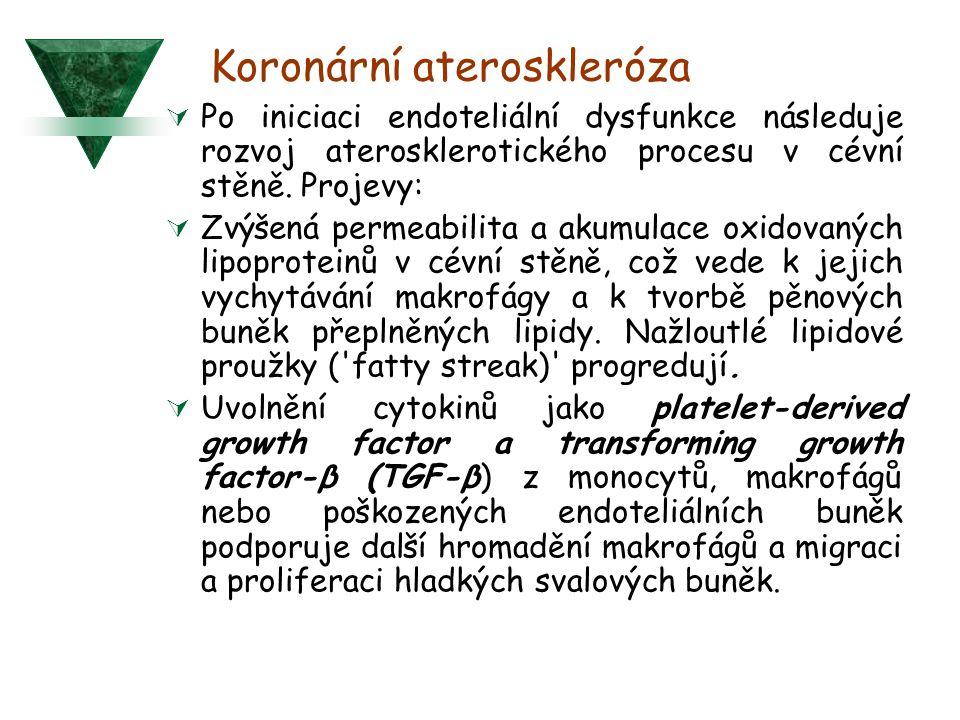 Koronární ateroskleróza  Po iniciaci endoteliální dysfunkce následuje rozvoj aterosklerotického procesu v cévní stěně. Projevy:  Zvýšená permeabilit