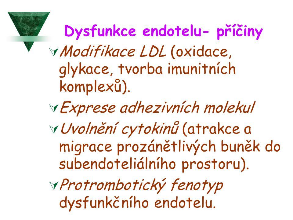 Dysfunkce endotelu- příčiny  Modifikace LDL (oxidace, glykace, tvorba imunitních komplexů).  Exprese adhezivních molekul  Uvolnění cytokinů (atrakc