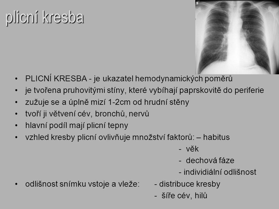 plicní kresba PLICNÍ KRESBA - je ukazatel hemodynamických poměrů je tvořena pruhovitými stíny, které vybíhají paprskovitě do periferie zužuje se a úpl