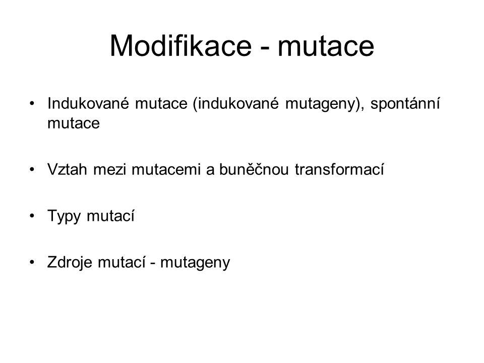 Modifikace - mutace Indukované mutace (indukované mutageny), spontánní mutace Vztah mezi mutacemi a buněčnou transformací Typy mutací Zdroje mutací -