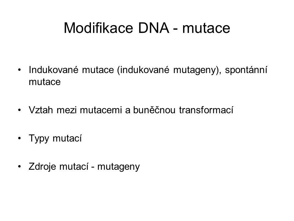 Modifikace DNA - mutace Indukované mutace (indukované mutageny), spontánní mutace Vztah mezi mutacemi a buněčnou transformací Typy mutací Zdroje mutac