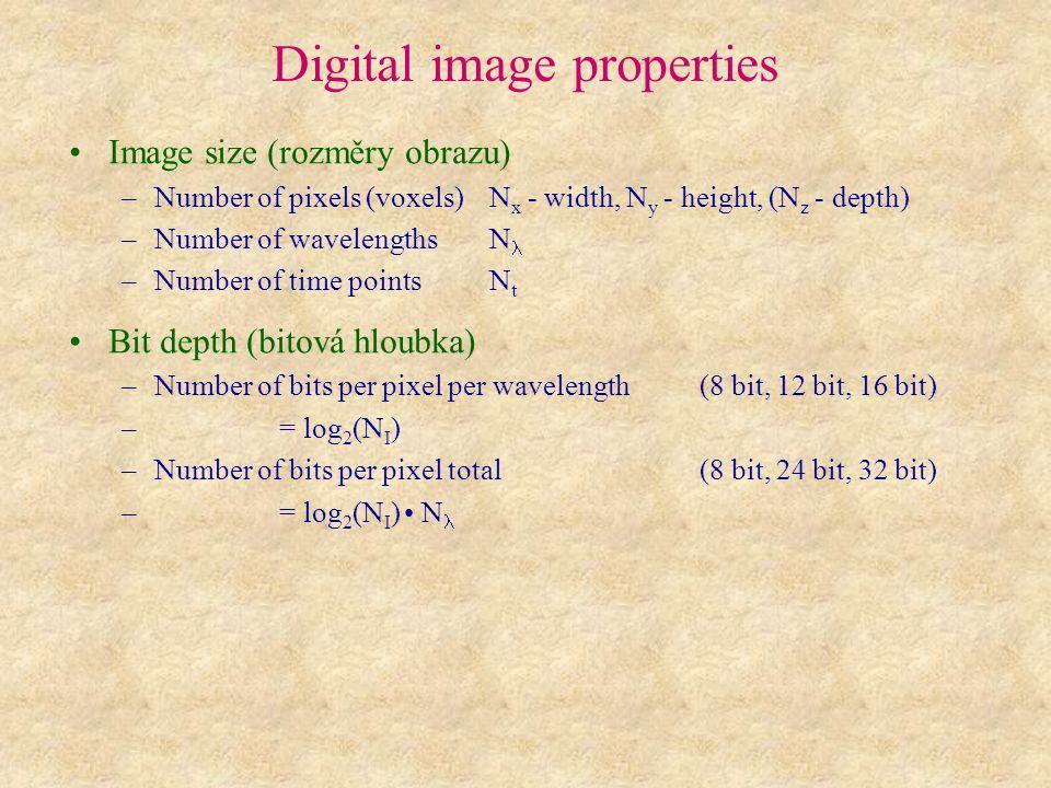Digital image properties Image size (rozměry obrazu) –Number of pixels (voxels)N x - width, N y - height, (N z - depth) –Number of wavelengthsN –Numbe