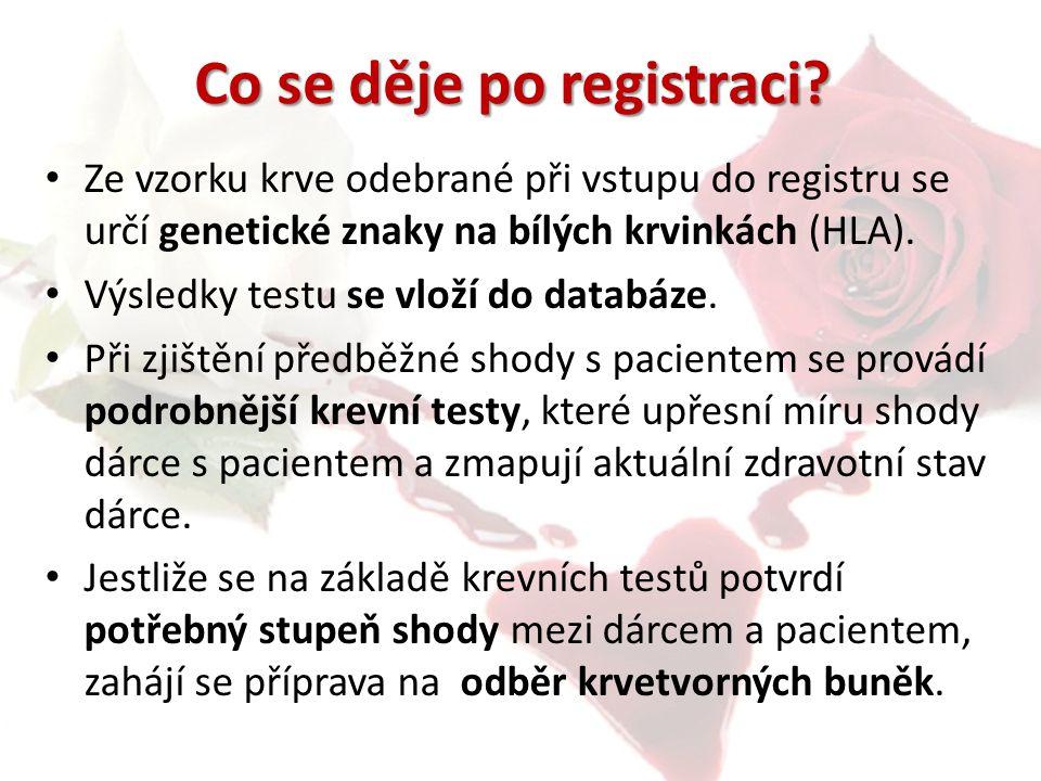 Co se děje po registraci? Ze vzorku krve odebrané při vstupu do registru se určí genetické znaky na bílých krvinkách (HLA). Výsledky testu se vloží do