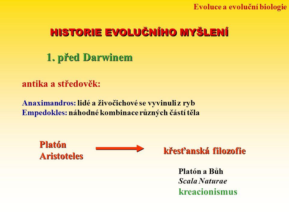 Evoluce a evoluční biologie HISTORIE EVOLUČNÍHO MYŠLENÍ 1. před Darwinem antika a středověk: Anaximandros: lidé a živočichové se vyvinuli z ryb Empedo