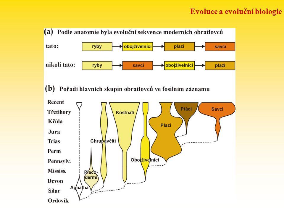 Evoluce a evoluční biologie LZE EVOLUCI DOKÁZAT? experimentální evoluce: Primula verticillata  P. floribunda  P.kewensis Galleopsis pubescens  G. s